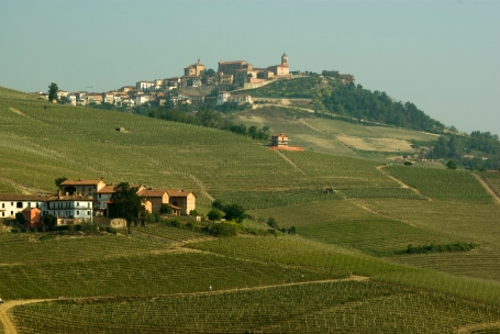 Vineyards in the Barolo zone looking towards La Morra (Photo ©Tom Hyland)