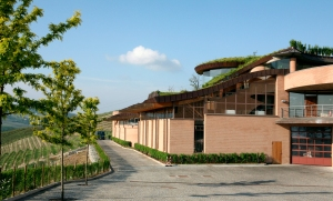 Renato Ratti Winery, Annunziata (Photo ©Tom Hyland)